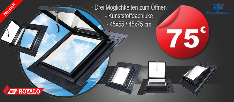 dachfenster velux fakro roto klapp schwing fenster cabriofenster. Black Bedroom Furniture Sets. Home Design Ideas